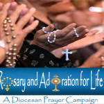 Rosary and Adoration for Life 2016