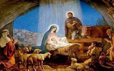 Nativity Scene - Respect Life